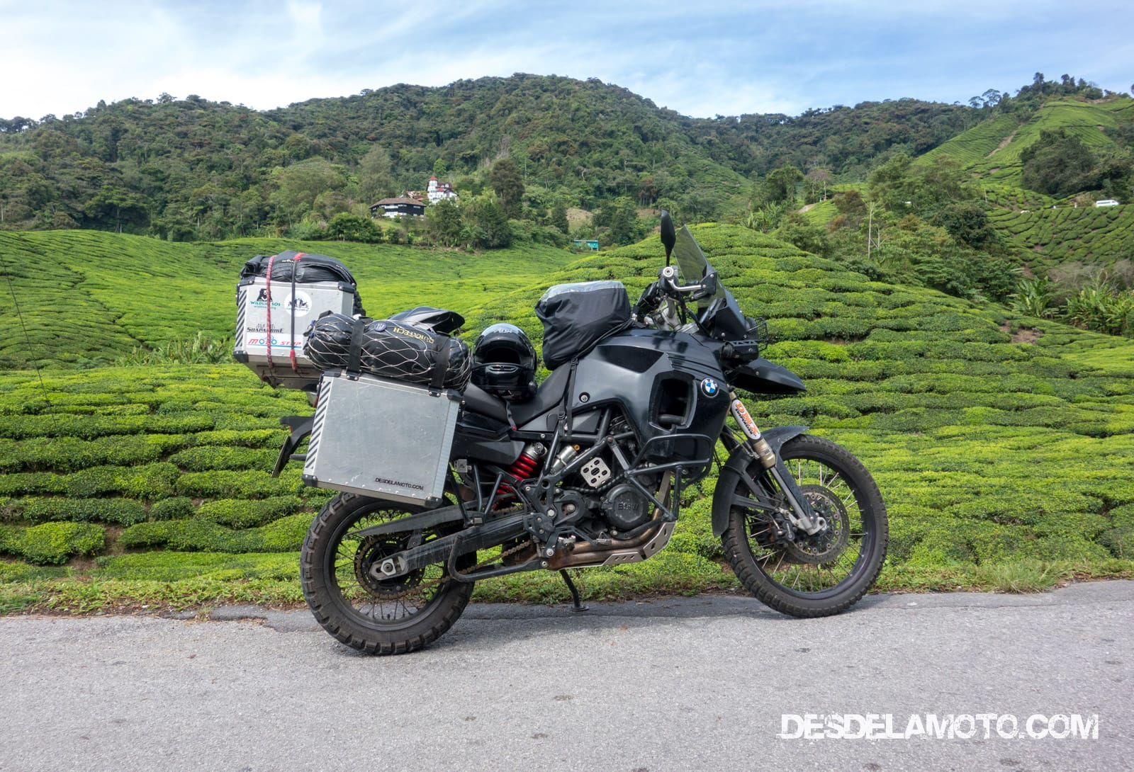 Cameron Highlands.