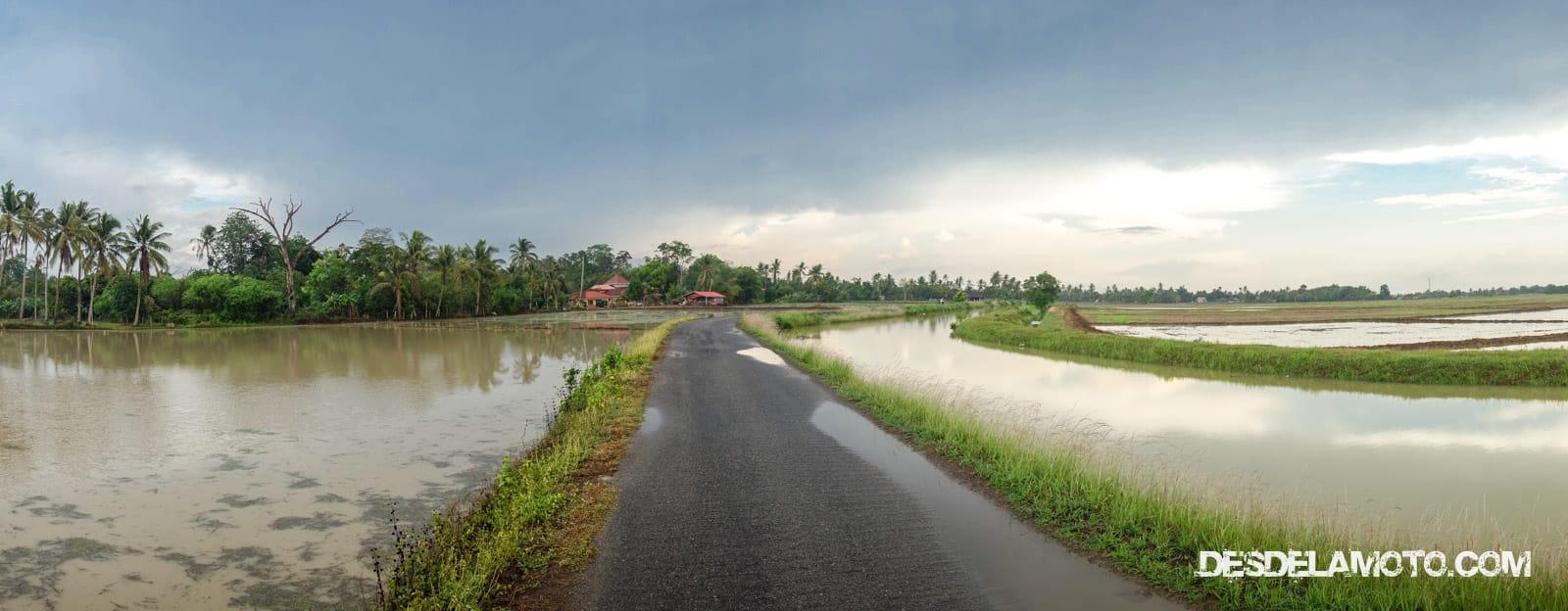 Camino de Penang